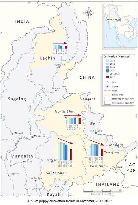 Myanmar poppy cultivation